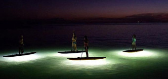 NEW Night Paddle Tours from Rincon Paddle Boards