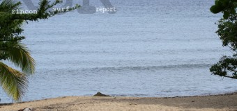 Rincon Surf Report – Saturday, Aug 15, 2015