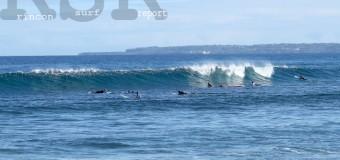 Rincon Surf Report – Sunday, Jan 17, 2016