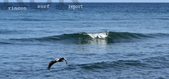Rincon Surf Report – Monday, Aug 15, 2016