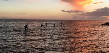 Sunset paddle tours from Rincon Paddleboards