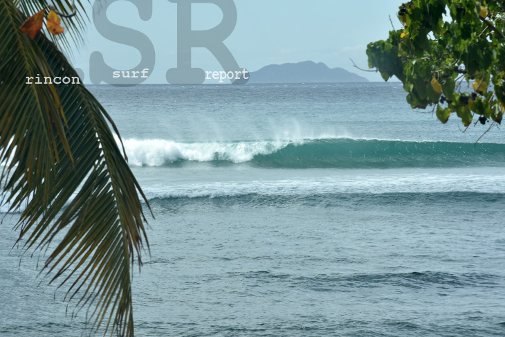 Rincon Surf Report And Wave Forecast For Puerto Rico Surfing