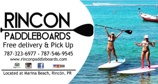 Rent Stand-Up Paddle Boards (SUP) in Rincon.