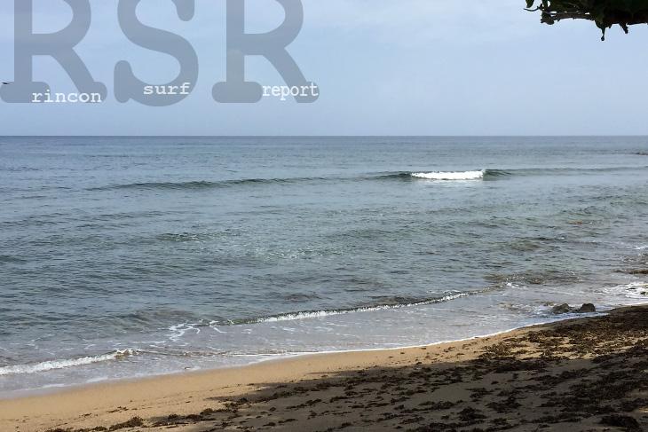 Surfs Up   Lazy Parrot Inn   Puerto Rico