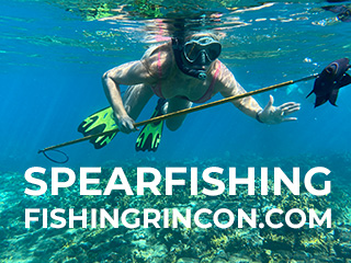 Spearfishing in Rincon, Puerto Rico.