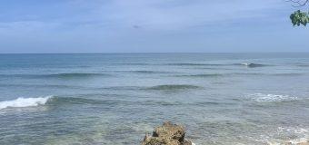 Rincon Surf Report – Thursday, Aug 13, 2020