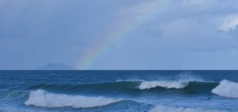 Rincon Surf Report – Wednesday, Dec 30, 2020