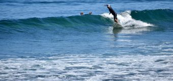 Rincon Surf Report – Saturday, May 15, 2021