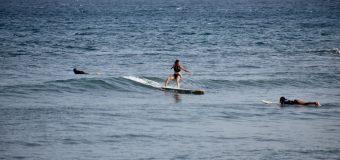 Rincon Surf Report – Sunday, Aug 22, 2021