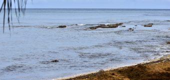 Rincon Surf Report – Wednesday, Aug 18, 2021